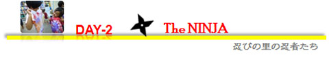 The-Ninja